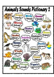 English Worksheet: Animals Sounds Pictionary 2