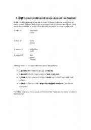 English Worksheets: collecctive nouns