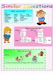 English Worksheets: Similar questions