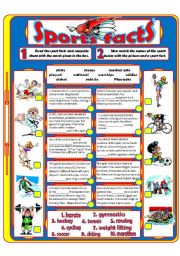 English Worksheets: Sports Facts