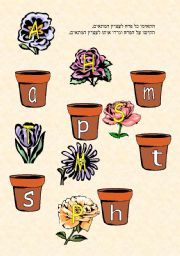 English Worksheets: Matching letters