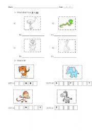 English Worksheets: Animal