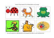 English Worksheets: minibeast