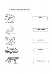 english teaching worksheets wild animals. Black Bedroom Furniture Sets. Home Design Ideas