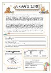 English Worksheet: A cat�s life