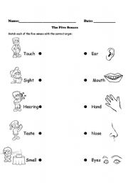 Printables Five Senses Worksheet For Kindergarten english teaching worksheets the five senses senses