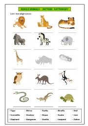English Worksheets: Jungle animals: picture dictionary