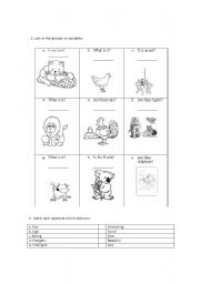 English Worksheets: THEY ARE, IT IS WITH ANIMALS