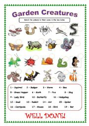 English Worksheet: Garden Creatures