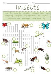 English Worksheet: Insects Crossword Puzzle