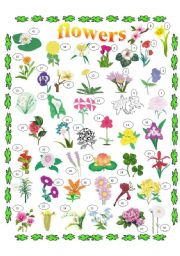 FLOWERS PICTIONARY, KEY INCLUDED, 2 PAGES