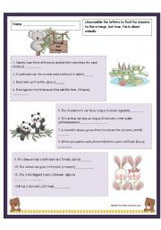 English Worksheet: Fun facts about animals