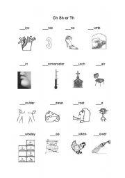English Worksheets: ch sh th