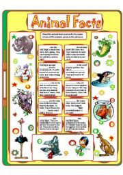 English Worksheets: Animal Facts