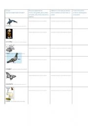 English Worksheets: animals and their habitats part4