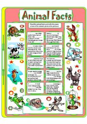 English Worksheet: ANIMAL FACTS (2)