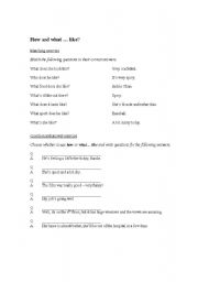 English Worksheets: �How...?� and �What... like?�