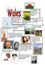 English Worksheet: Wales