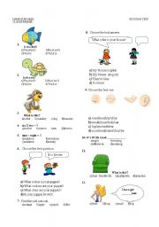 English Worksheets: body, clothes,coulours,animals