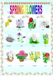 Spring flowers esl worksheet by szabonemeva english worksheet spring flowers mightylinksfo