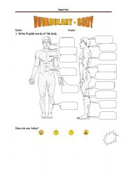 English Worksheets: Vocabulary BODY - without help