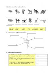 English Worksheets: full animals worksheet