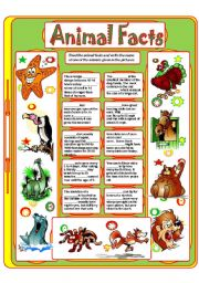 English Worksheet: ANIMAL FACTS (3)
