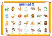 English Worksheets: animal 2
