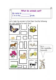 English Worksheets: What do animals eat