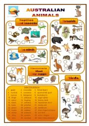 English Worksheet: Australian animals, a labelling worksheet (fully editable)
