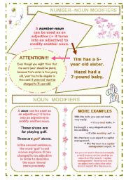 GRAMMAR POSTER / HANDOUT ON NOUN MODIFIERS PLUS WORKSHEET WITH 4 EXERCISES; 5 PAGES; B&W SHEETS AND KEY INCLUDED