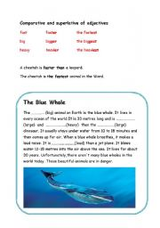English Worksheets: The Blue Whale