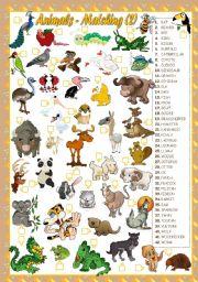 English Worksheets: ANIMALS - MATCHING(2)