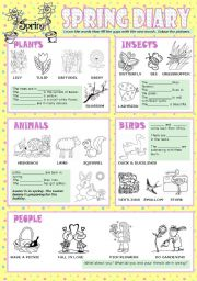 English Worksheets: Spring diary