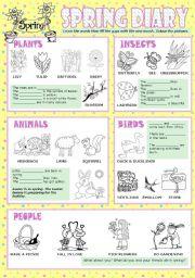 English Worksheet: Spring diary