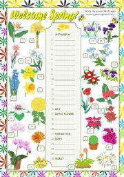 Names Of Flowers Alphabetical