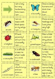 English Worksheet: Insects Dominoes Part 1