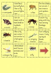 English worksheet: Insects Dominoes Part  2