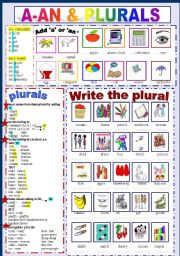 English Worksheet: A - An & Plurals