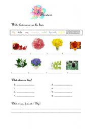 Vocabulary worksheets > Environment and nature > Flowers