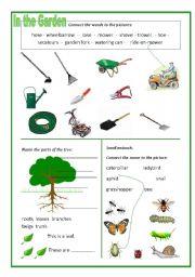 English worksheet: In the Garden