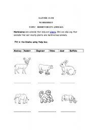 English Worksheets: Herbivores animals