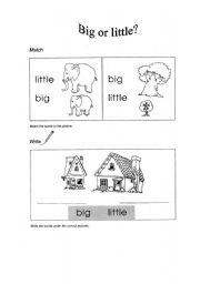 English Worksheets: Big or little?