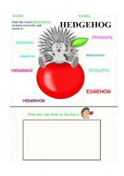 English Worksheets: Circle the right word - Hedgehog
