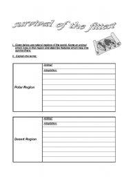 English Worksheets: Animal Adaptation