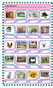 how are animals useful to us esl worksheet by abizer. Black Bedroom Furniture Sets. Home Design Ideas