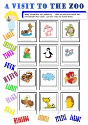 English Worksheets: a visit to the zoo 1/2