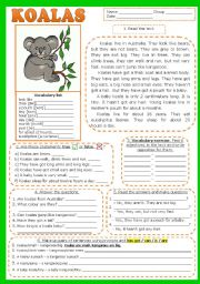 English Worksheet: KOALAS. READING , comprehension (fully editable) + KEY