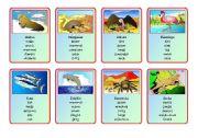 English Worksheet: Animal Riddles Pages 6,7,8