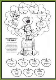 The Story Of An Apple Esl Worksheet By Pukas